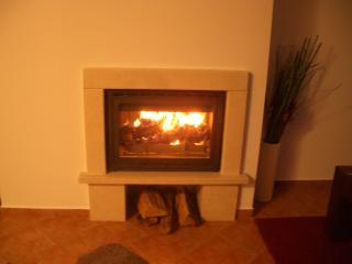 Real wood log fire