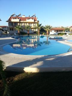 palm beach complex beautiful pool area,