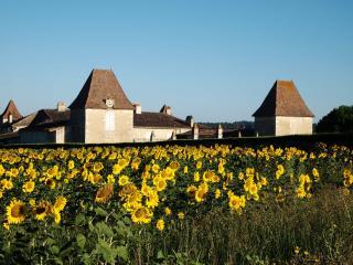 Chateau des Egrons - Dordogne, Duras