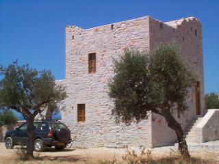 MANI TOWER HOUSE - DELIGHTFUL RURAL LOCATION, Agios Nikolaos