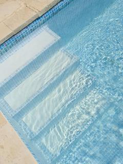 Steps into Pool (Great for kids and infirm)