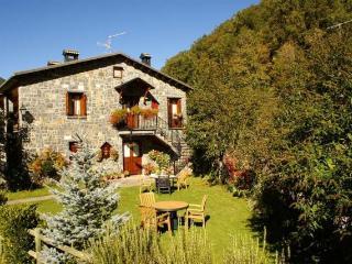 Casa Rural en Ordesa con capacidad de 4-14 plazas, Sarvise