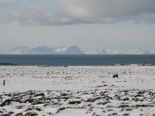 Charming Cabin 2  - Sumarhús, Skagastrond