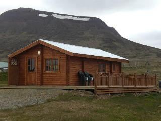 Mountain Cabin - Fjallagisting