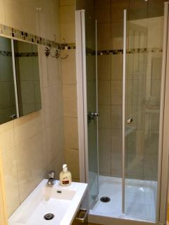 Brand new separate shower room