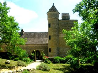 Your own Petit Chateau with private pool, sundowners on the tower battlements!.