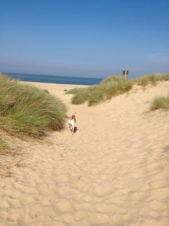 Golden sands and wide open space on Winterton beach