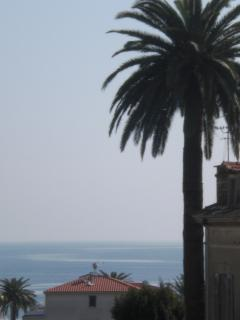 zoom of vue