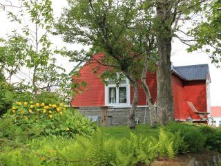 The old farm house - Dalvik