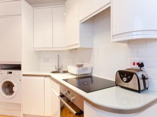 Kitchn with oven, fridge, toaste, coffee machine etc