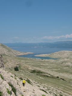 View to the Mala luka (from hiking trail).
