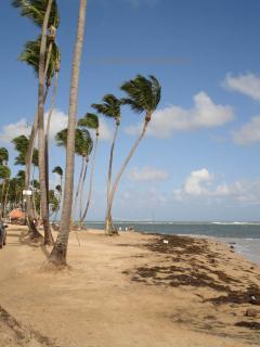 Las Terrenas Beach ©