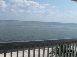 Waterside At Coquina Key Fl- Overlooking Tampa Bay, San Petersburgo