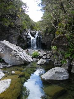 Madeira Nature