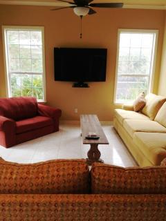 Living Area 55 inch High Def Flat Screen