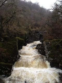 Bracklinn Falls in Callander in full winter flow (15 mins drive)