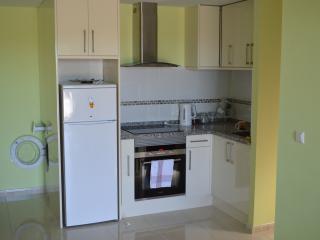 Kitchen with fridge freezer, oven, hob and microwave and washing machine