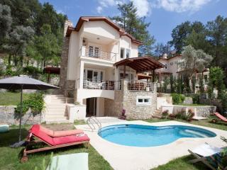 Gocek Vineyard Villas