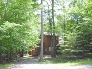 Nice Chalet in Poconos Vacation home, Tobyhanna