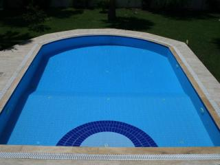 Large private pool with shallow end.