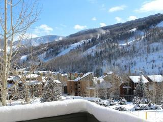 Perfect 1Bd Condo, Large Viewing Deck with Breathtaking Mountain/Ski Slope Views