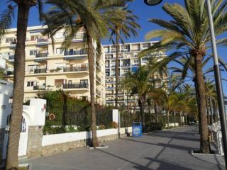 Skol 703  Duplex frontline beach