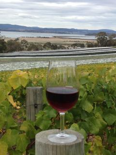 Enjoy a world renowned Tasmanian Pinot Noir at Coal Valley Vineyard(10 min drive)