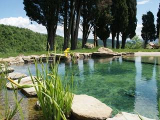 Natural Pool (1,5 m deep)