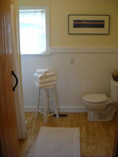 Full Downstairs Bathroom, (Plus Another Half Bath Upstairs Next to the Bedrooms)