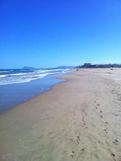 local Oliva beach