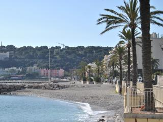 Nice apartment in Roquebrune Cap Martin