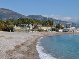 Nice apartment in Roquebrune Cap Martin