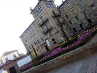 Apartamento casco antiguo Santiago