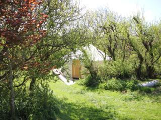 Anglesey-yurts