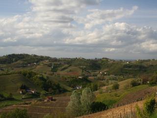 Villa Belveglio, Vinchio