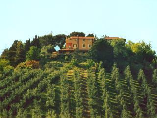 Agr. Casale di Colle - triloca, Torrita Tiberina