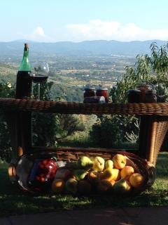 prodotti di stagione dell'orto- vino rosso-olio prodotto e molinato dai proprietari