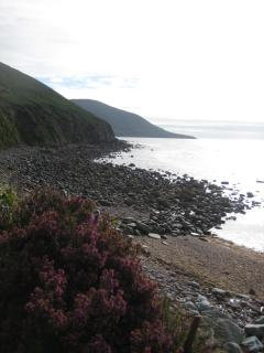 View of coast from footpath leading from house.