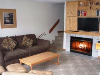 Forest Trails 24 - Private garage located in upper village includes free wifi, Whistler