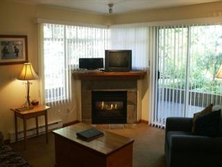 Stoney Creek Lagoons 5 - Conveniently located, free parking & wifi, Whistler
