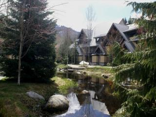 Stoney Creek Lagoons 32 - Conveniently located, private hot tub, free parking, Whistler