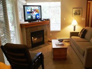 Stoney Creek Sunpath 8 - Quiet ground floor condo, Whistler