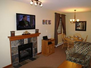 Stoney Creek Northstar 127 - 1 bedroom ground floor condo, Whistler