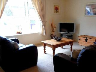 Saint Nicholas Crt Town Centre Apartment with WiFi