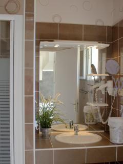 salle d'eau : plan vasque et douche de 1mx1m