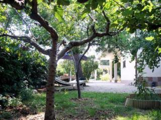 Villa Magnolia, Bellante