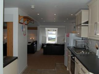 Comtemporary large open plan kitchen, lounge, dining area