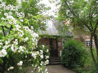Roses around the door welcome you to Bakery Cottage