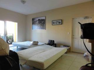 Miami, Two Bedroom Two full baths, Dos dormitorios, totalmente amoblado