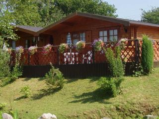 TWINPINES LODGE, CASTELLAU, LLANTRISANT - 12 MILES FROM CARDIFF.